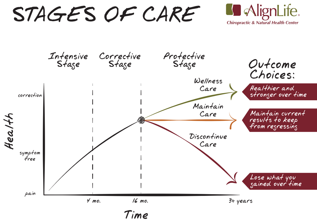 Phases of Care graph