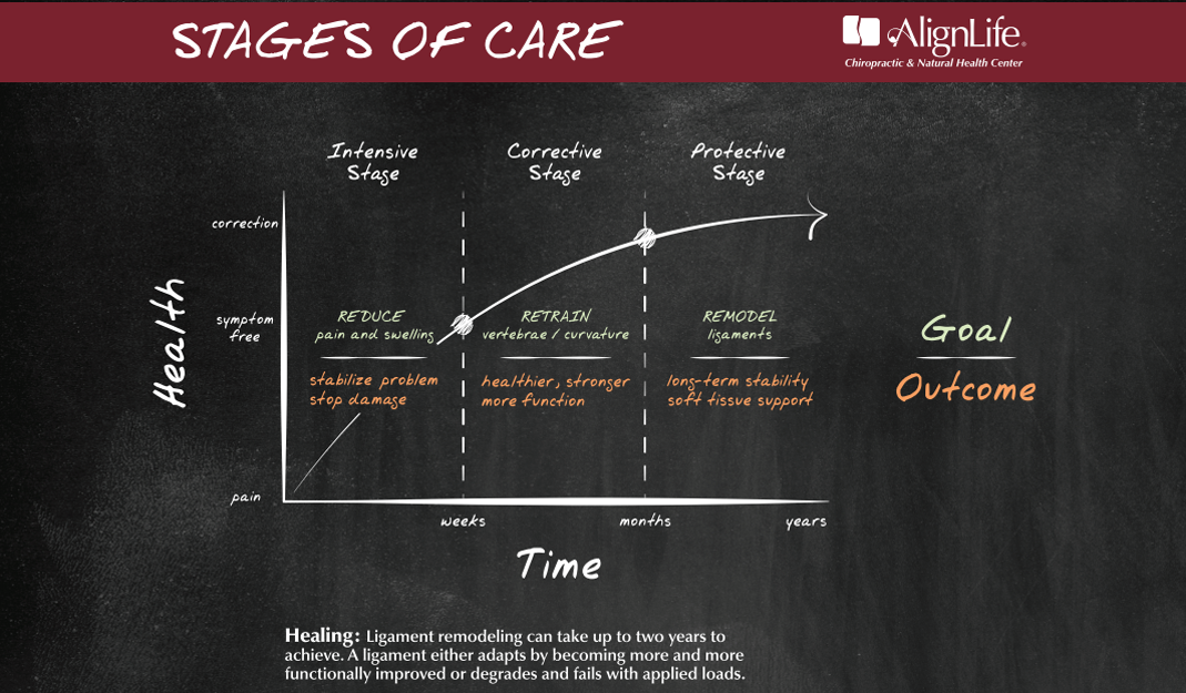 Phases of Care graph 2