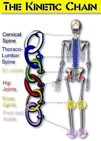 The Kinetic Chain