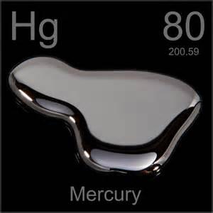 mercury and fish