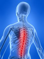 Chiropractic adjustments allow the body to naturally return to health
