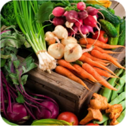 vegetables_nutrition_page.png